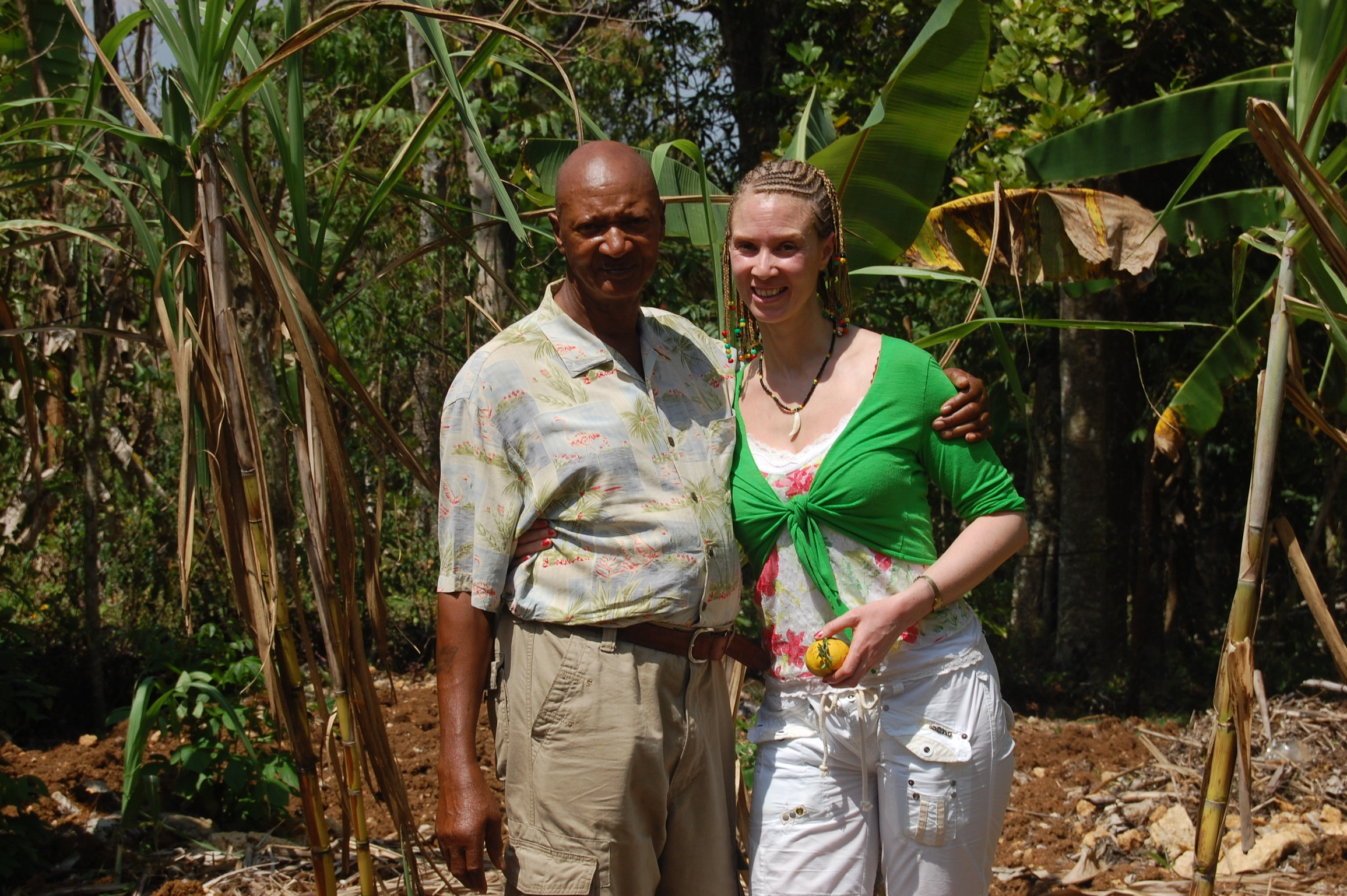 Tracing my roots to herbalists in my family in Jamaica