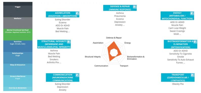 Functional Medicine Matrix at 360 Health Consultancy